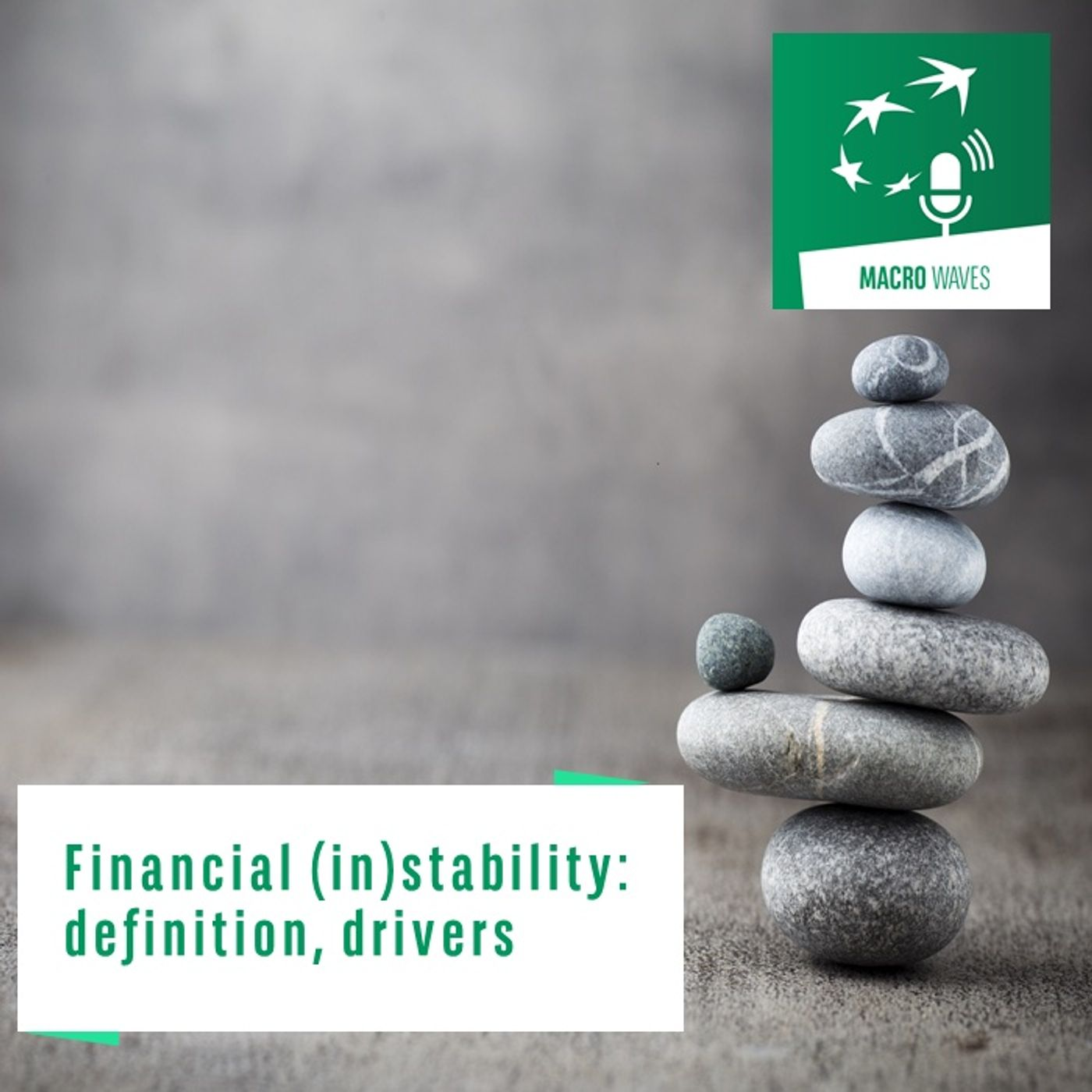 #01 – Financial (in)stability: definition, drivers