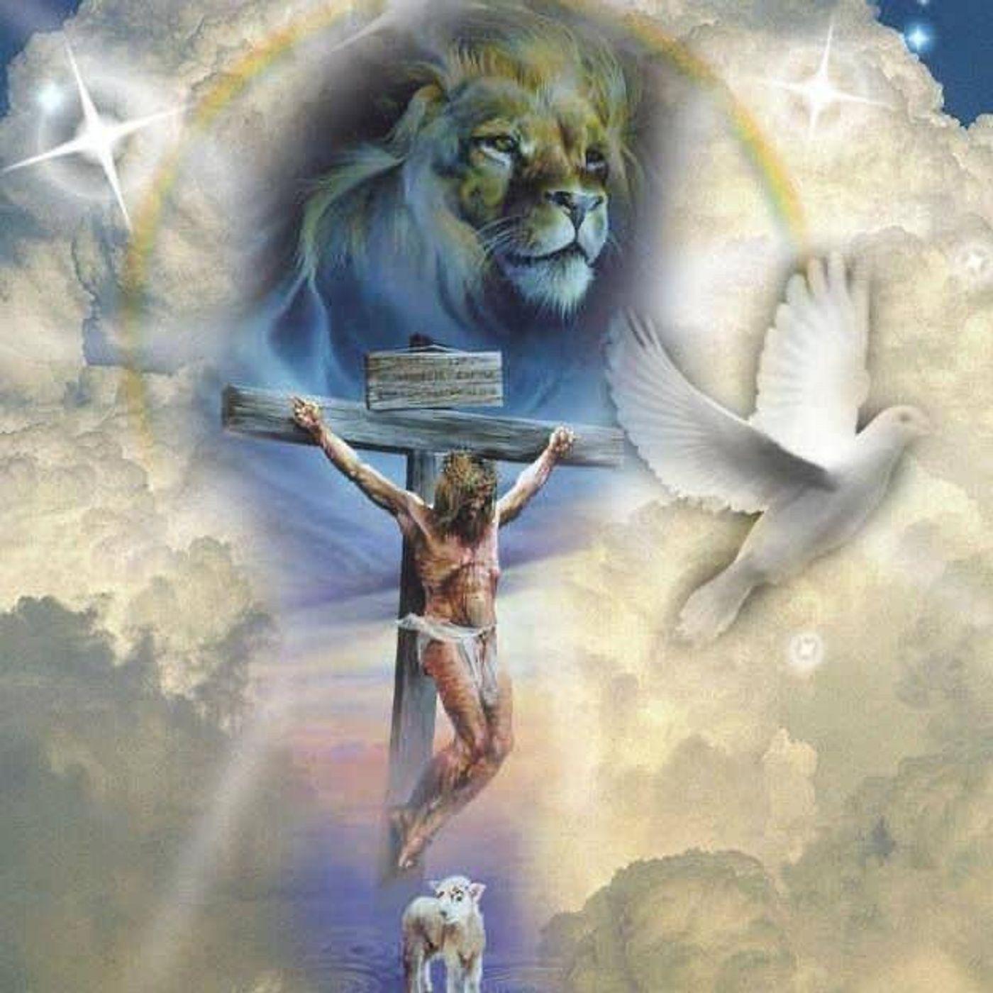 Live From  Grace Watcher Network - Sunday Celebration - (7-4-2021)