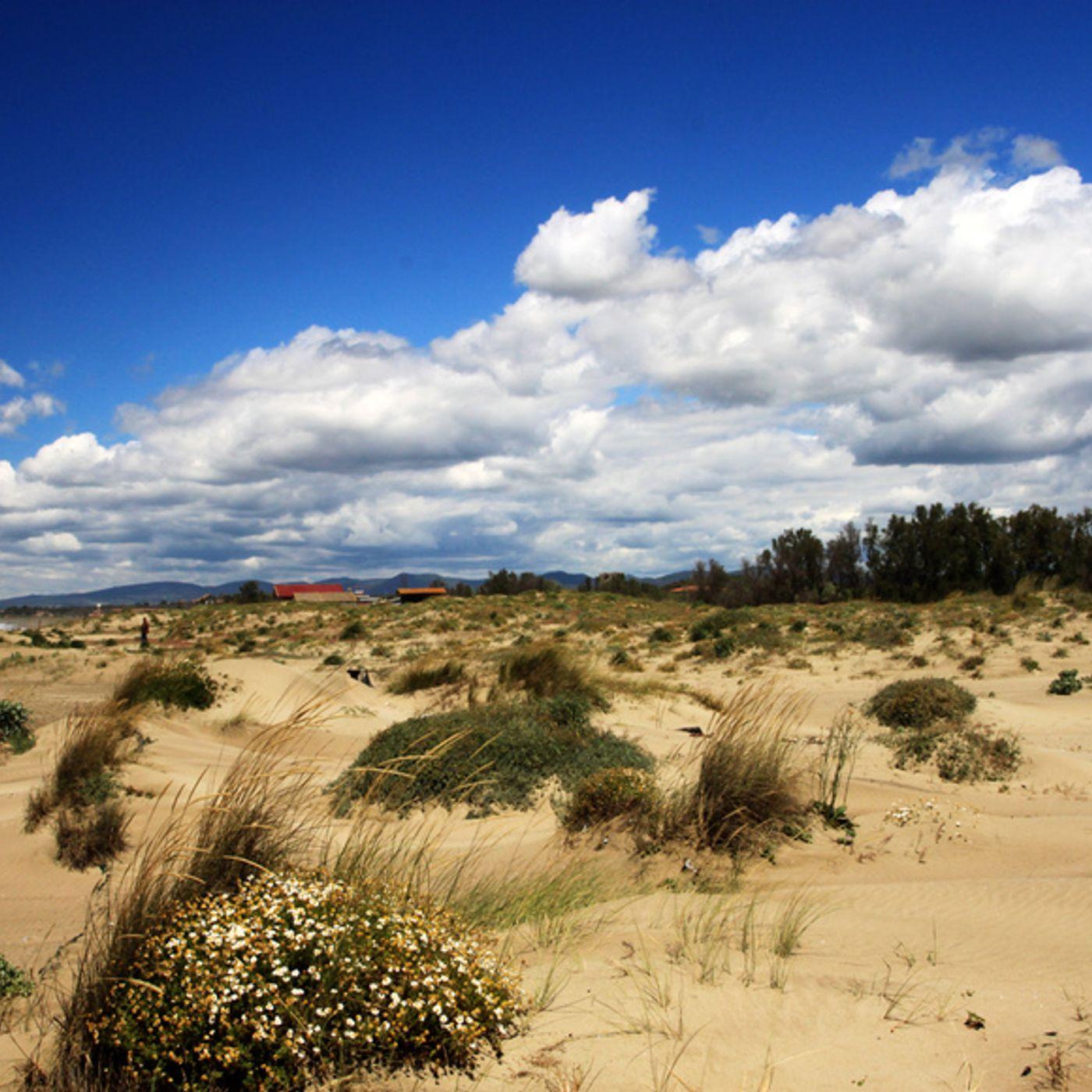 Le Dune di Passoscuro