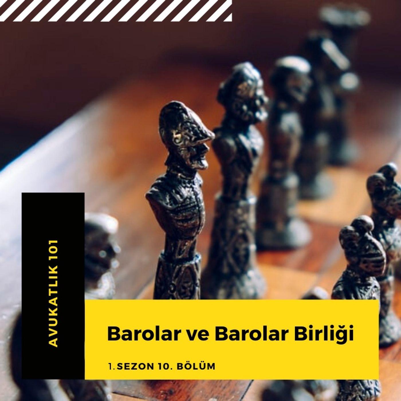 Barolar ve Barolar Birliği.10