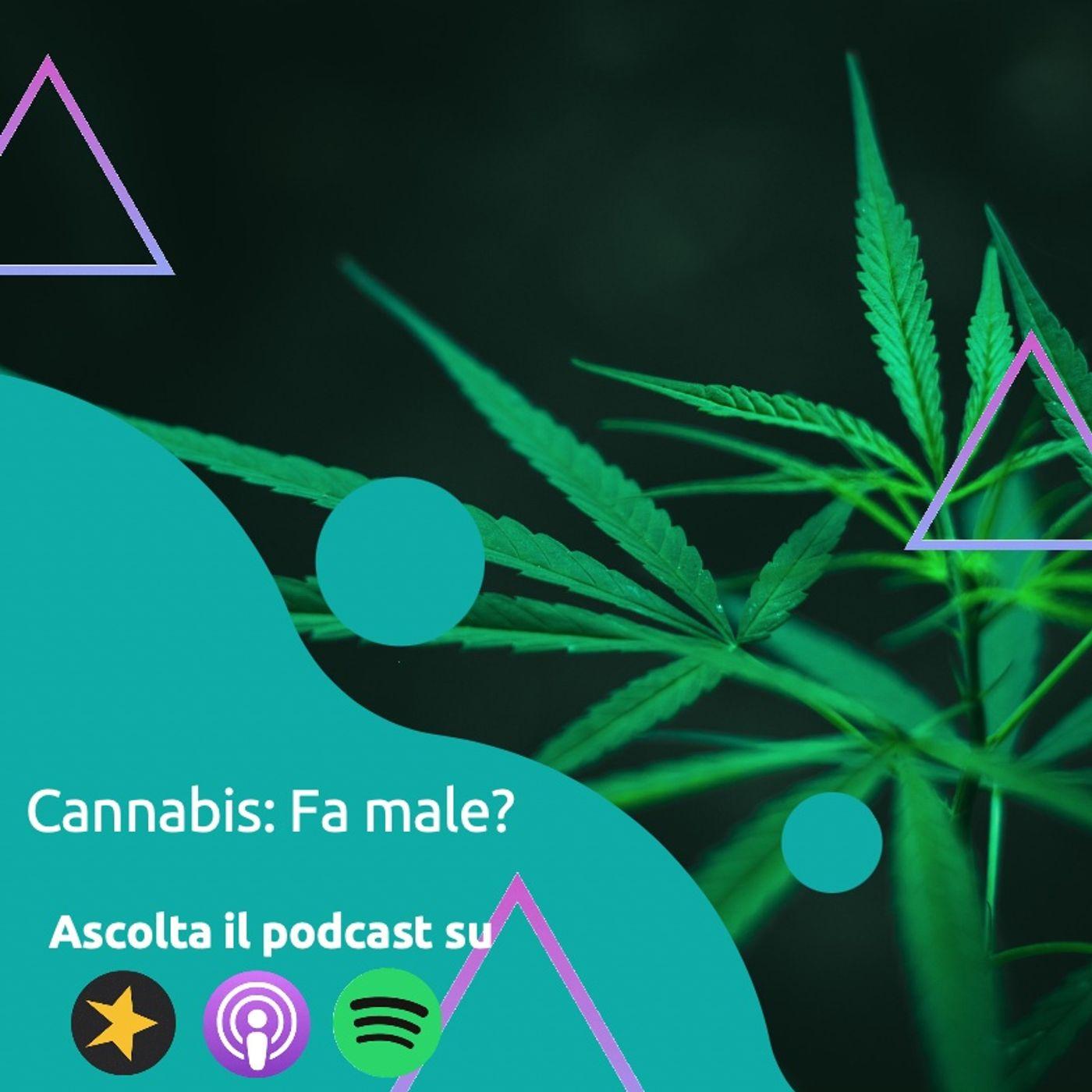 Cannabis: Chi ti dice che fa bene... sta mentendo!