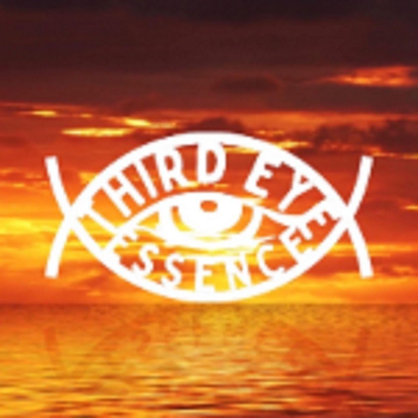 Spiritual Awakening, the UFO Phenomena, Ghosts & More with Mike Seniff