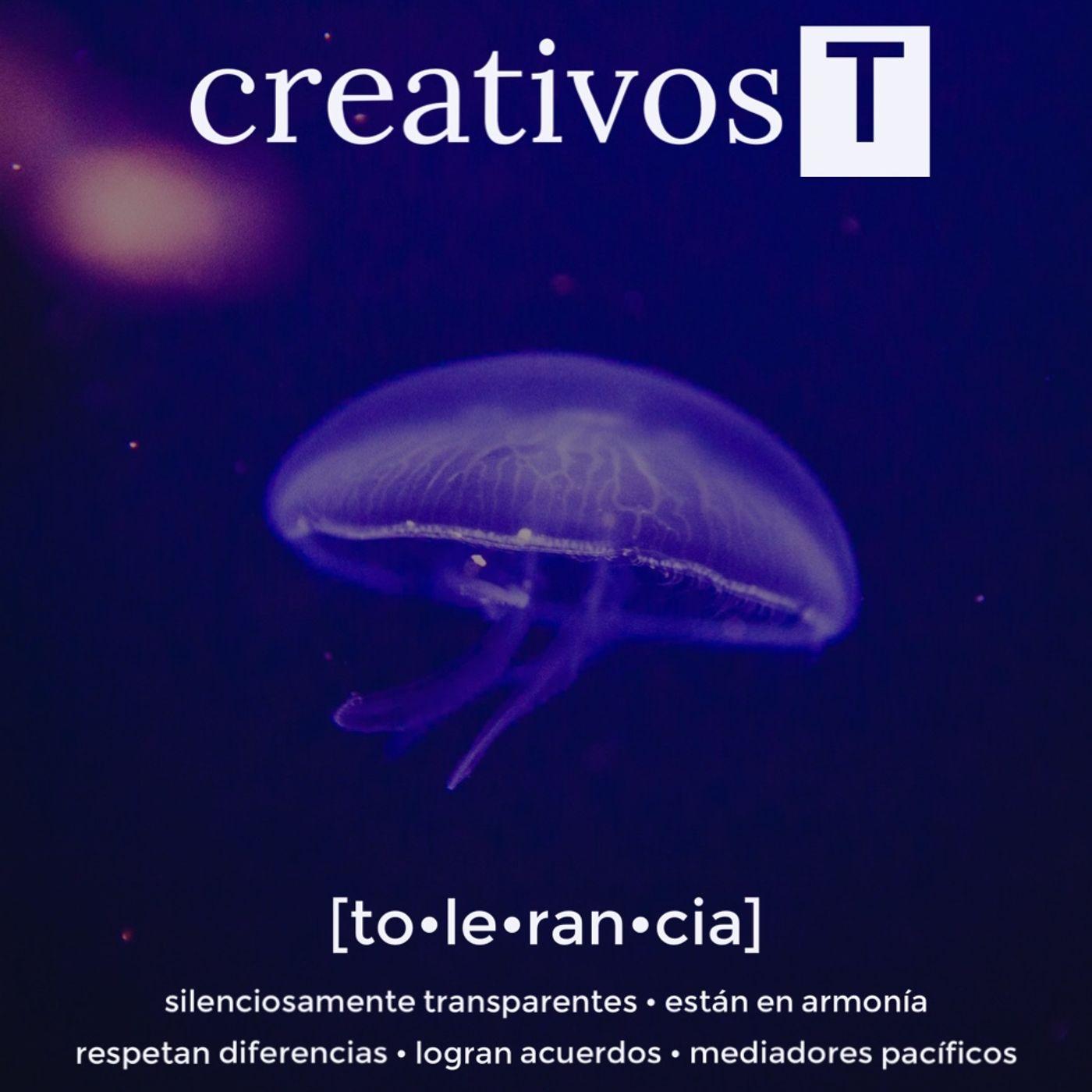 i272 CREATIVOS T