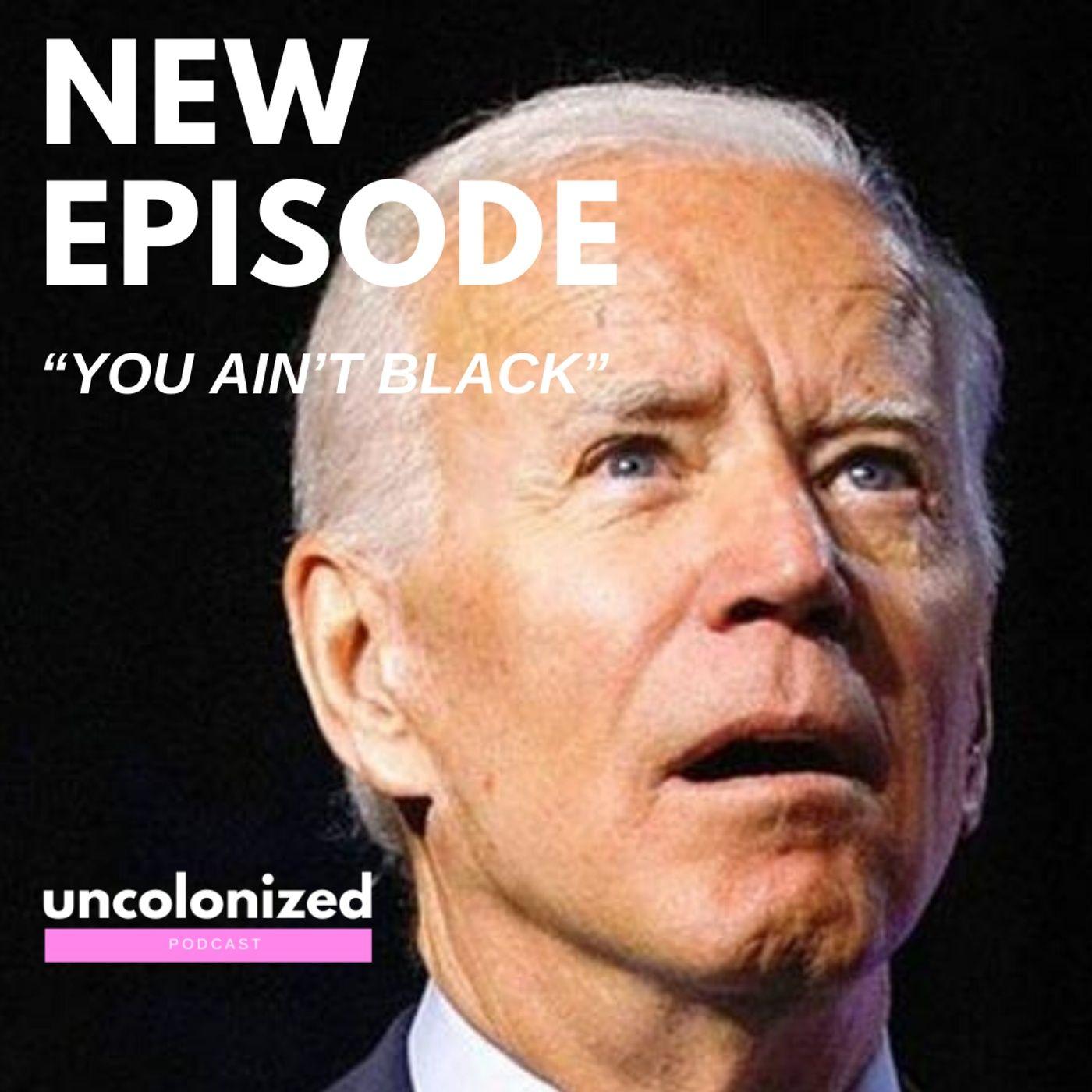 S04E31 – Joe 'You ain't black' Biden