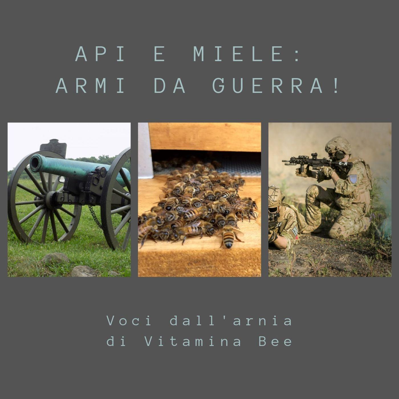 Api e miele: armi da guerra!