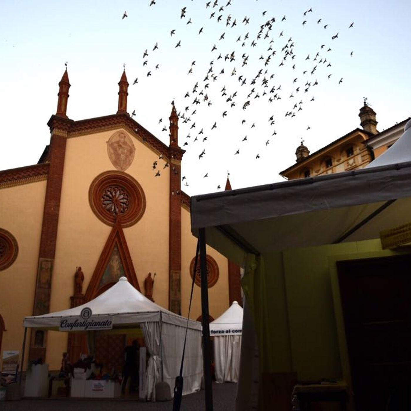 Artigianato Pinerolo 2020 - Intervista a Francesca Costarelli
