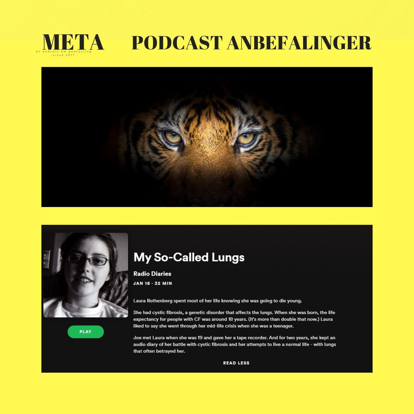 36. En Tiger & Verdens bedste episode [Onsdagsmail #3 || #podcastanbefalinger]