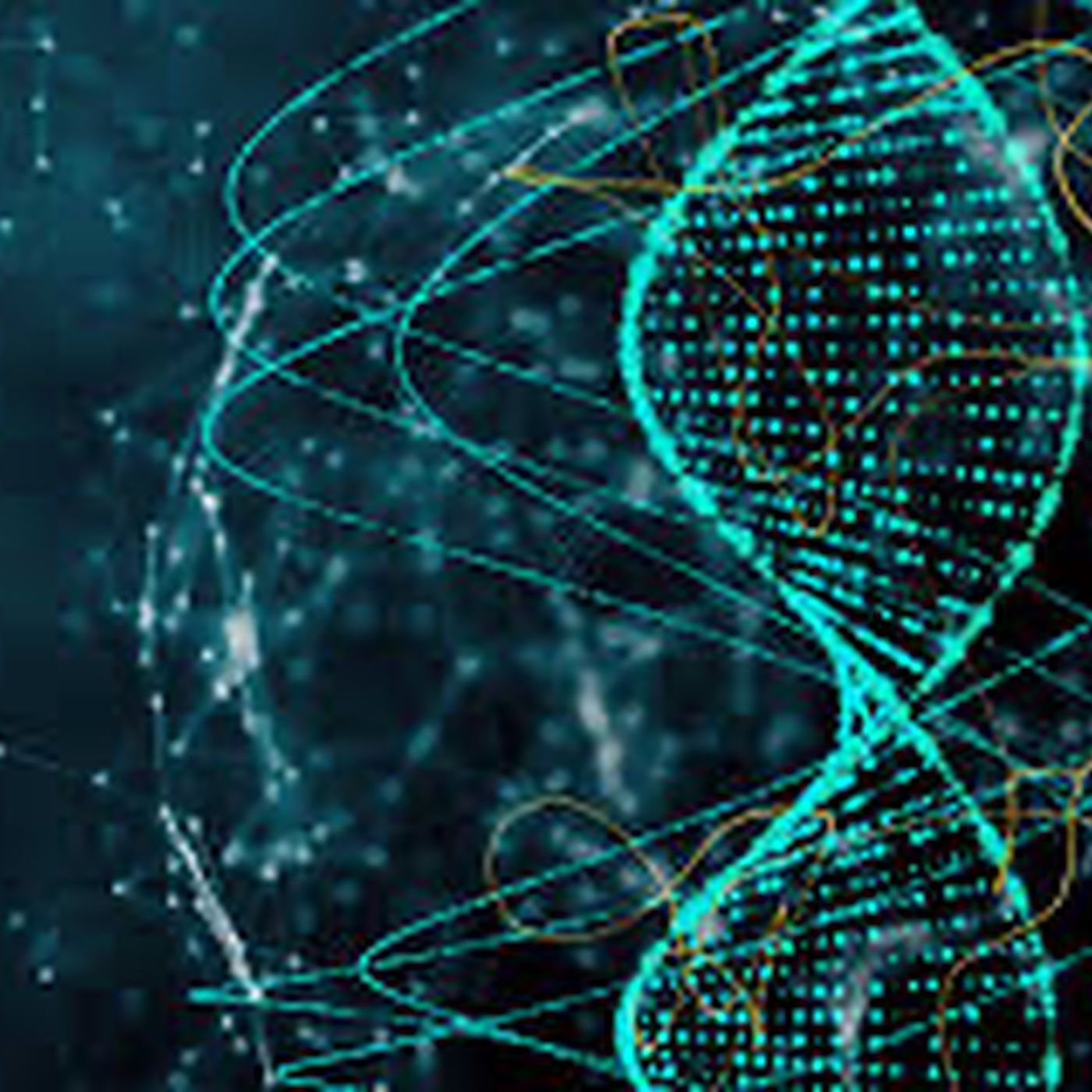Where is the Future of Human Genetic Engineering?