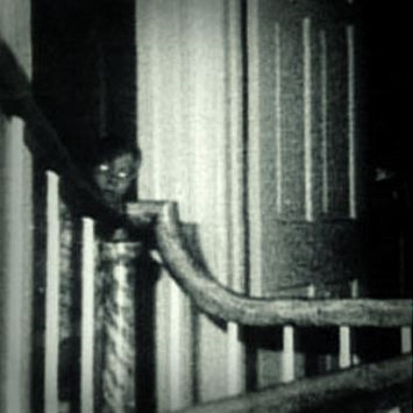 Experiment 038 - Crunchy Rug: The Amityville Horror