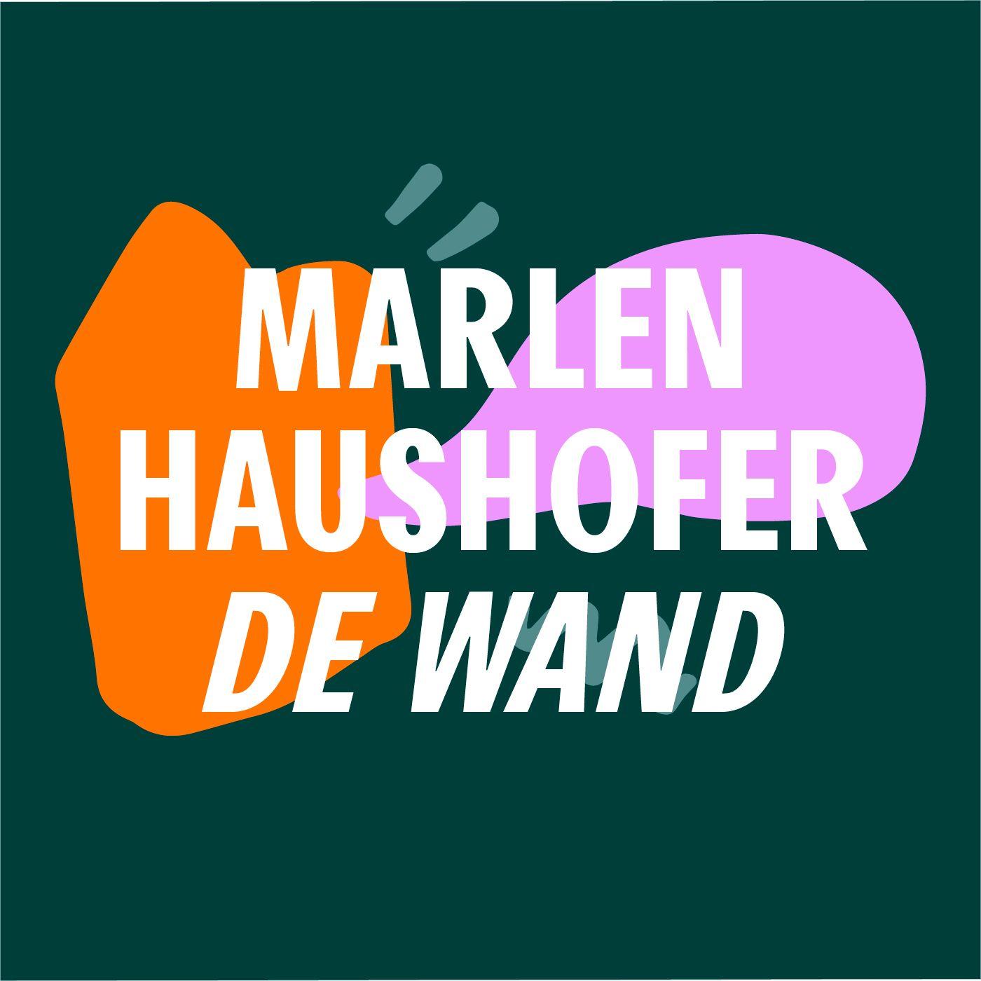 S5 #5 Vast in een sneeuwbol   De wand - Marlen Haushofer