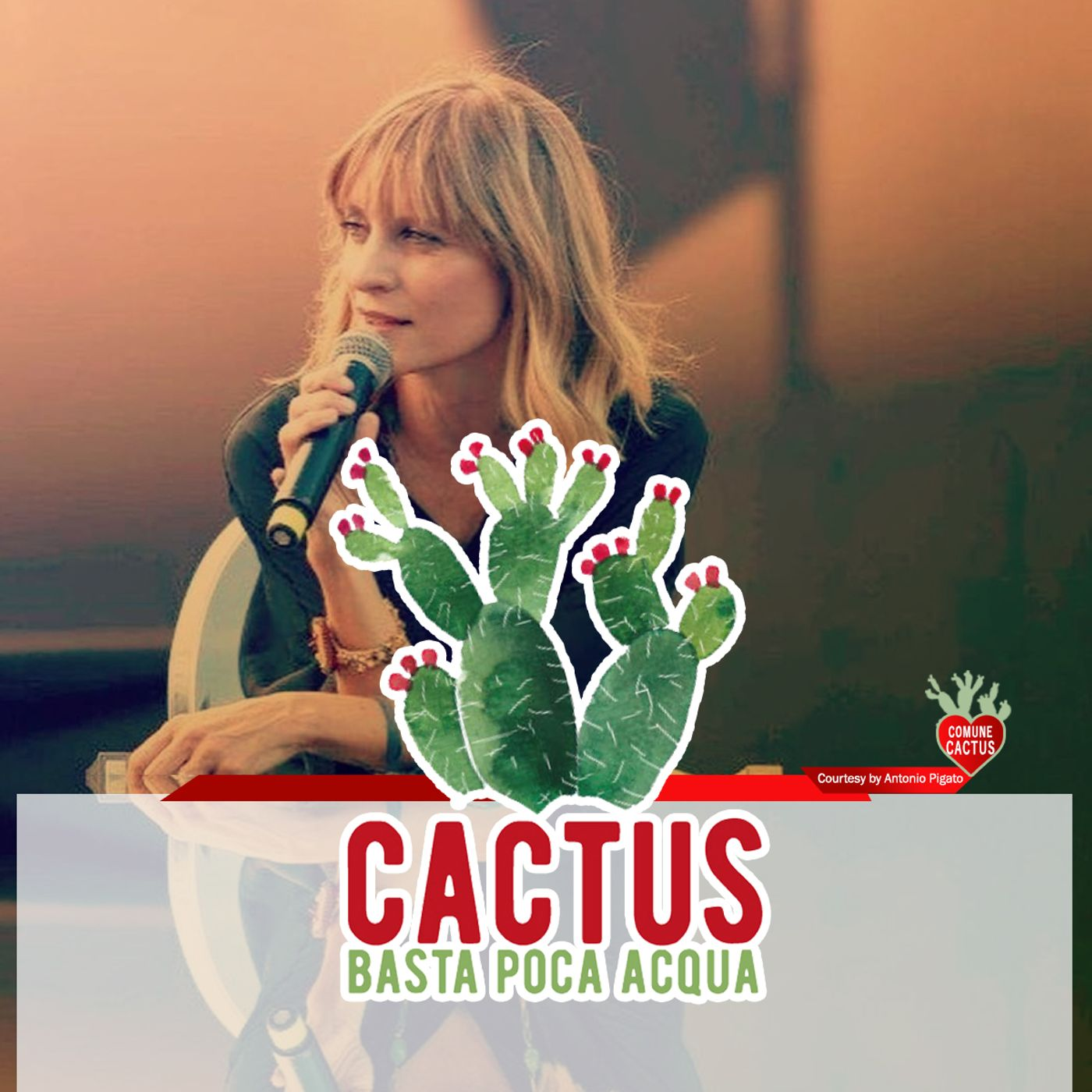 Cactus #26 - Senza le basi, dimenticatevi le altezze - 25/03/2021