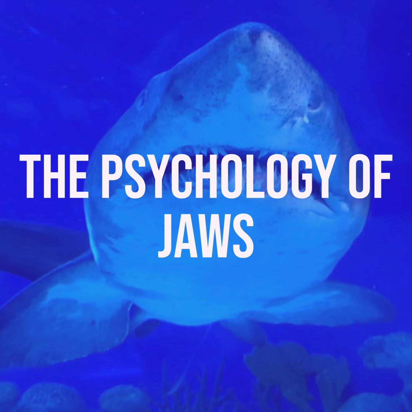The Psychology of Jaws (1975)