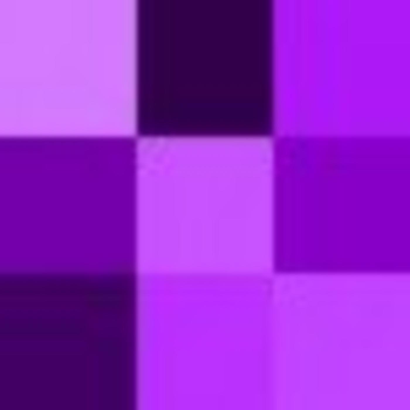 The Purple People Place Program