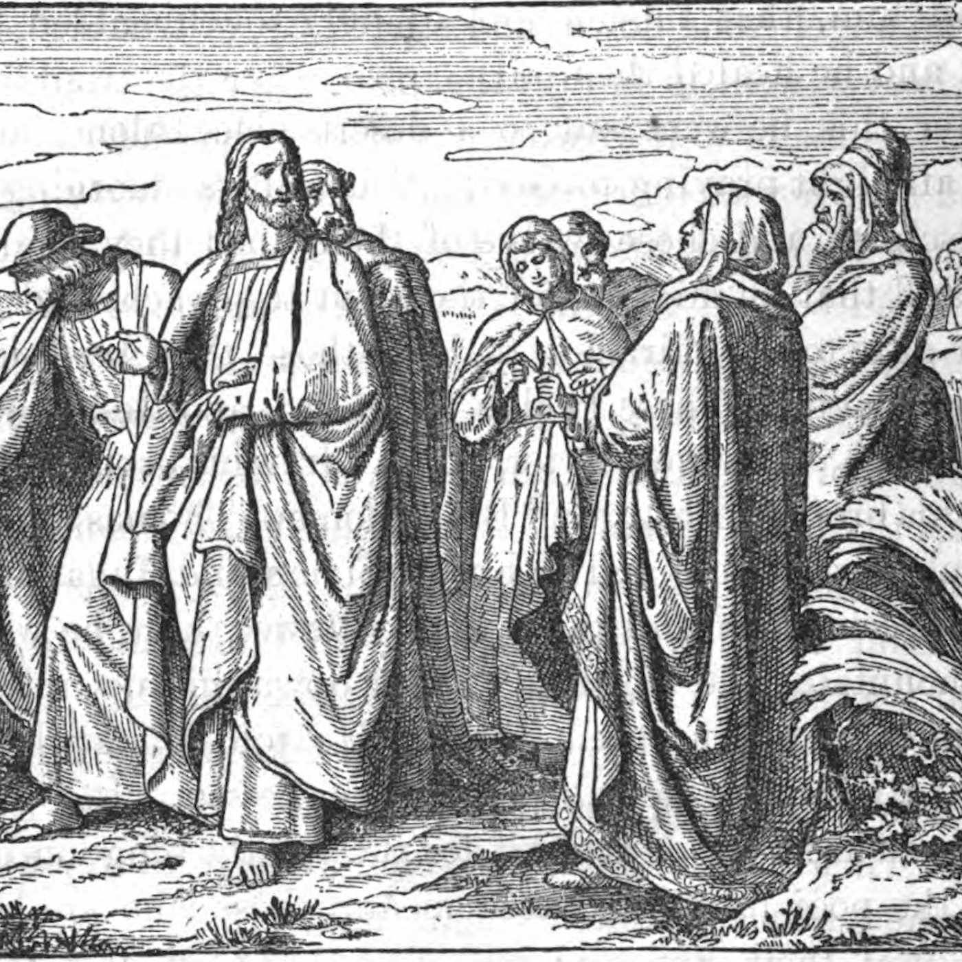 Saturday of the Twenty-Second Week in Ordinary Time - The Divine Law of Our Lord