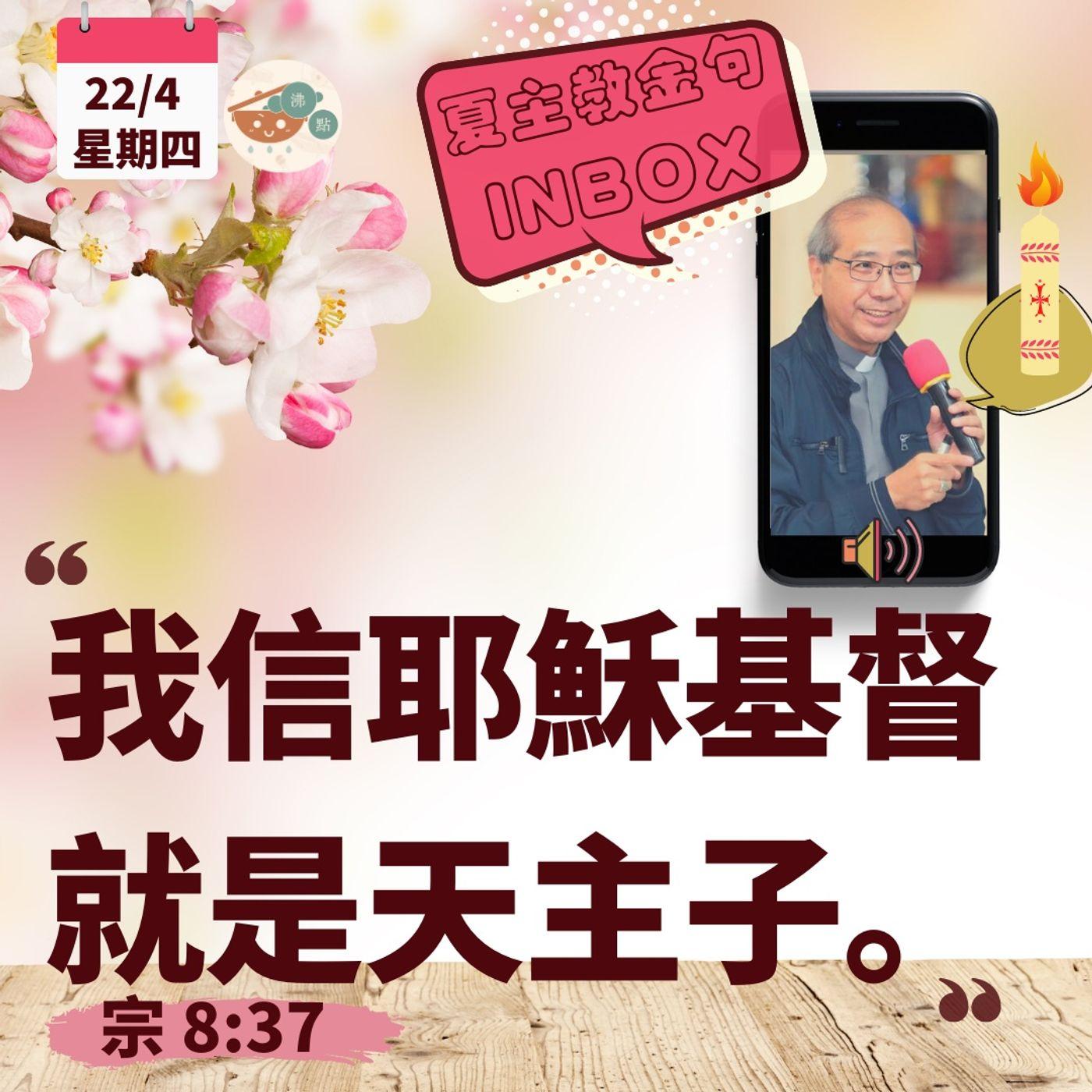 4月22日星期四【我信耶穌基督就是天主子】(宗8:37)