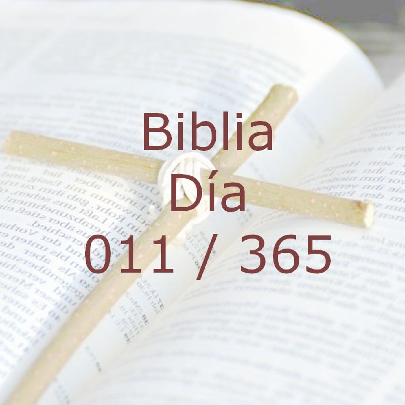 365 dias para la Biblia - Dia 011