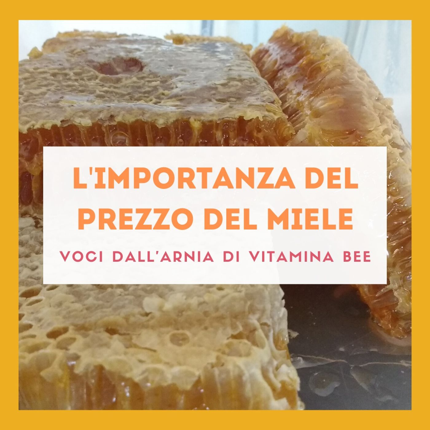 L'importanza del prezzo del miele