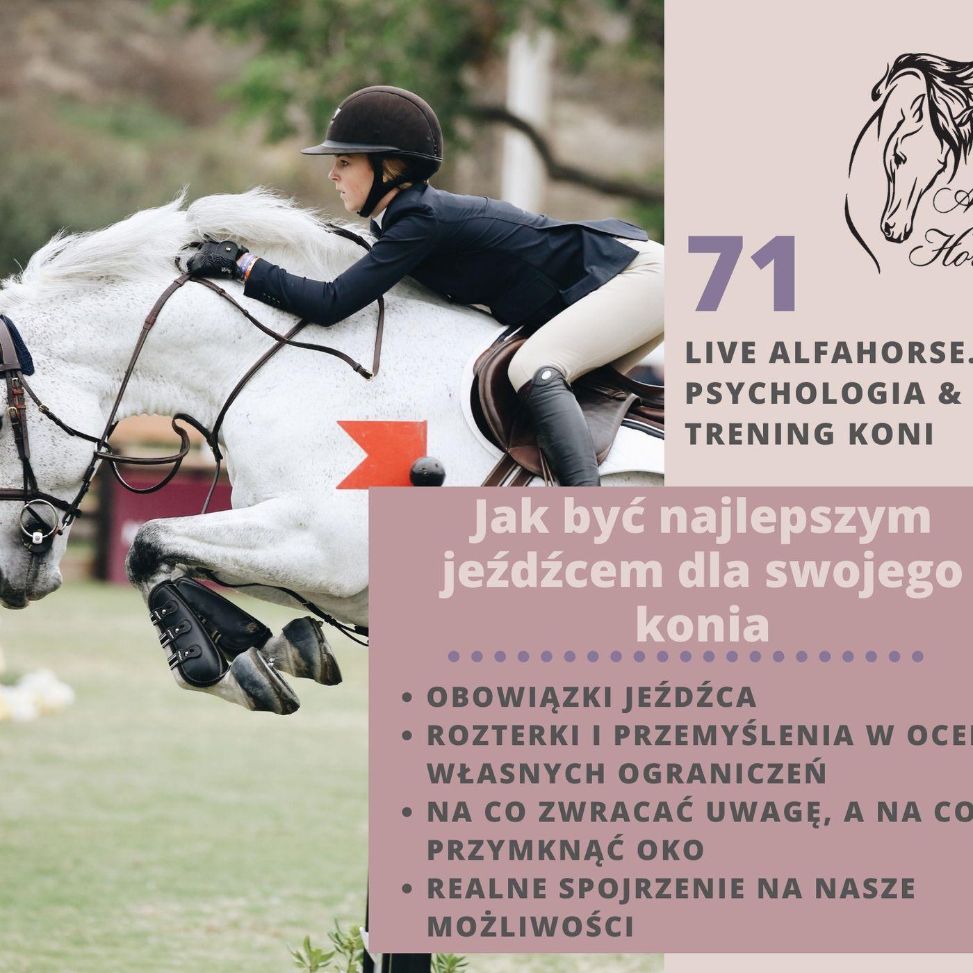 Live 71: Jak być najlepszym jeźdźcem dla swojego konia