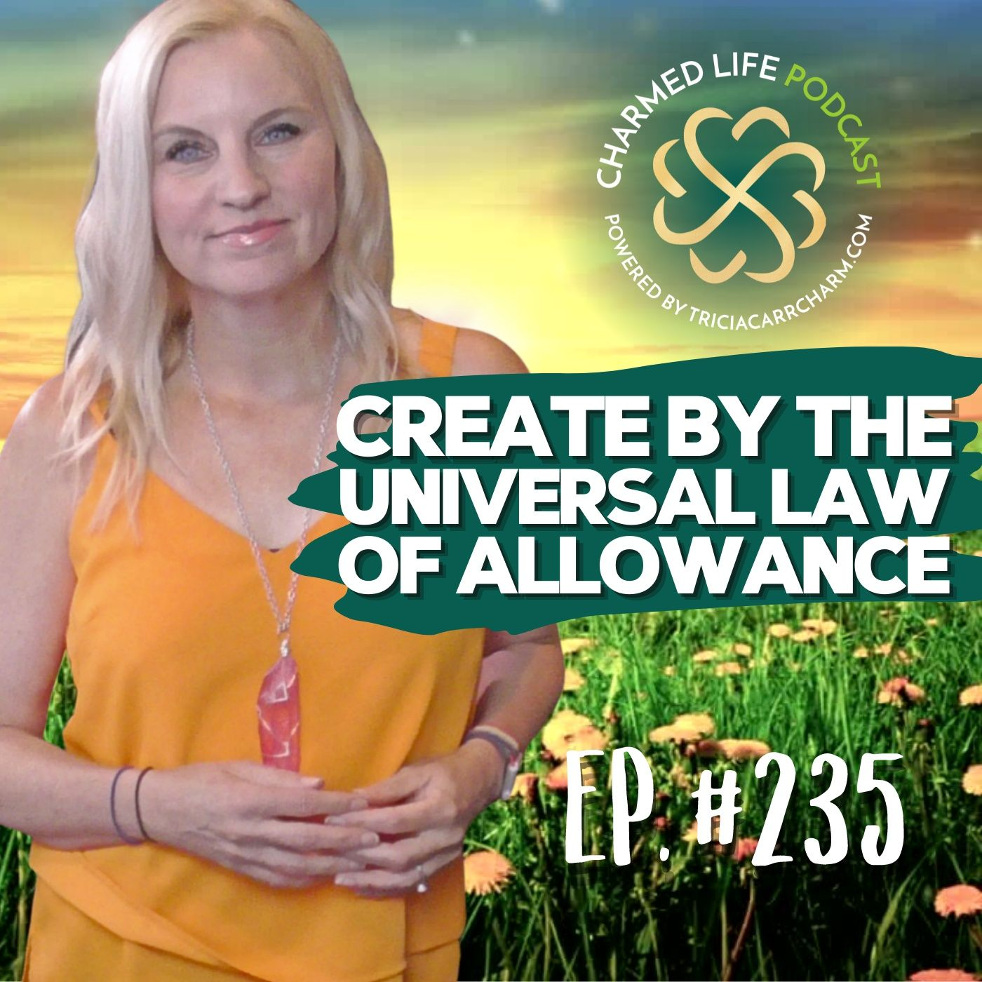 235: The Universal Law of Allowance  Let There Be Light