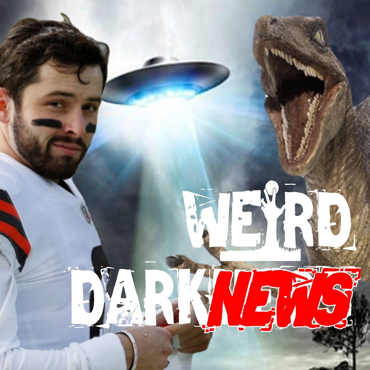 """NFL PLAYER SAYS 'I BELIEVE'"", ""DINO ON SECURITY CAM"", and more Weird DarkNews!  #WeirdDarkness"