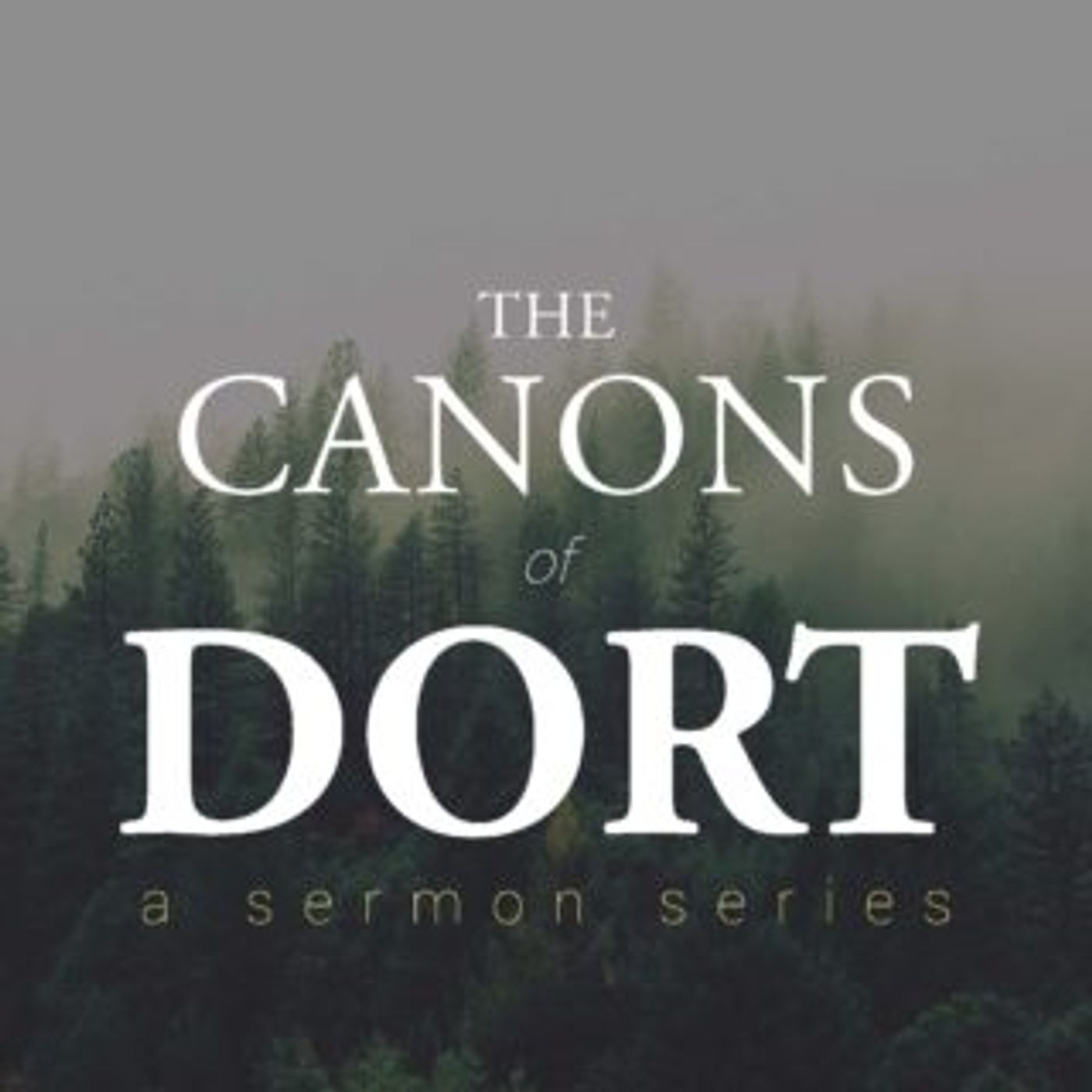 Canons of Dort: Theological Overview Pt 2