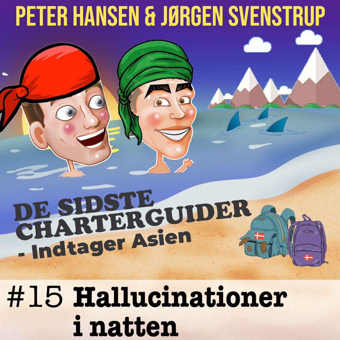 #15 - Hallucinationer i natten