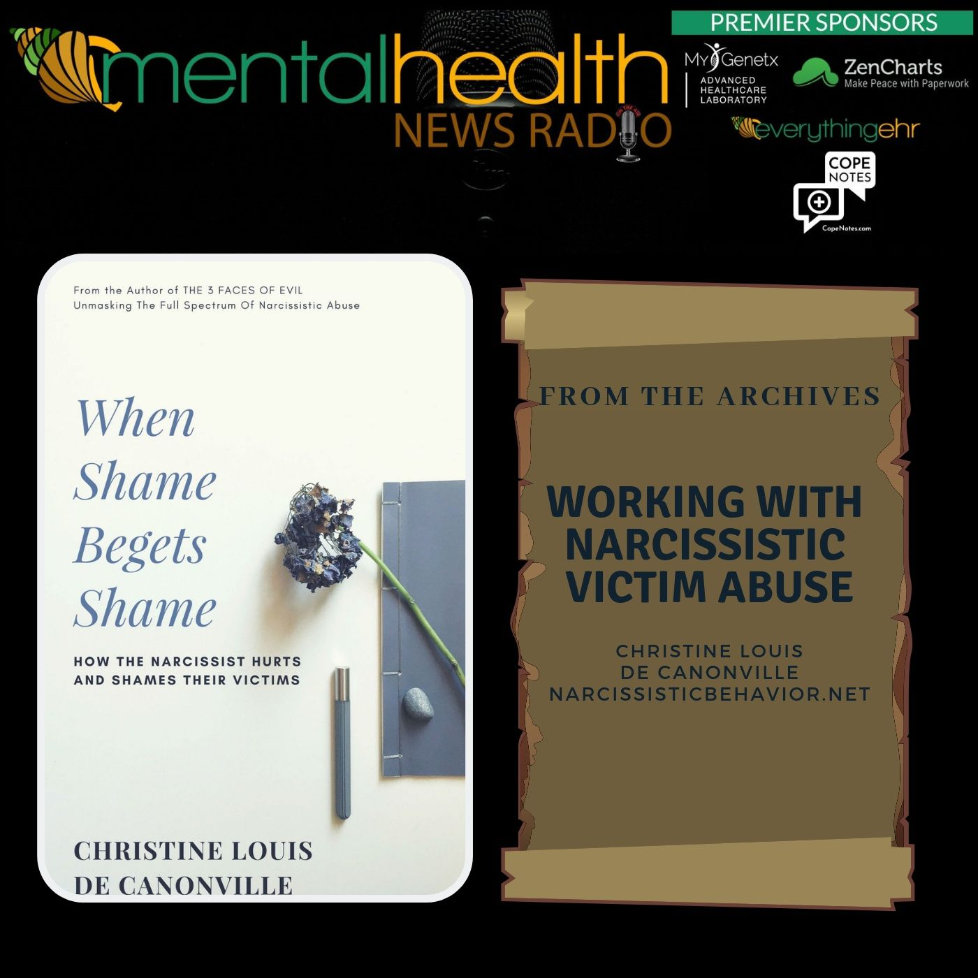 Mental Health News Radio - From the Archives: Working with Narcissistic Victim Abuse: Christine Louis de Canonville