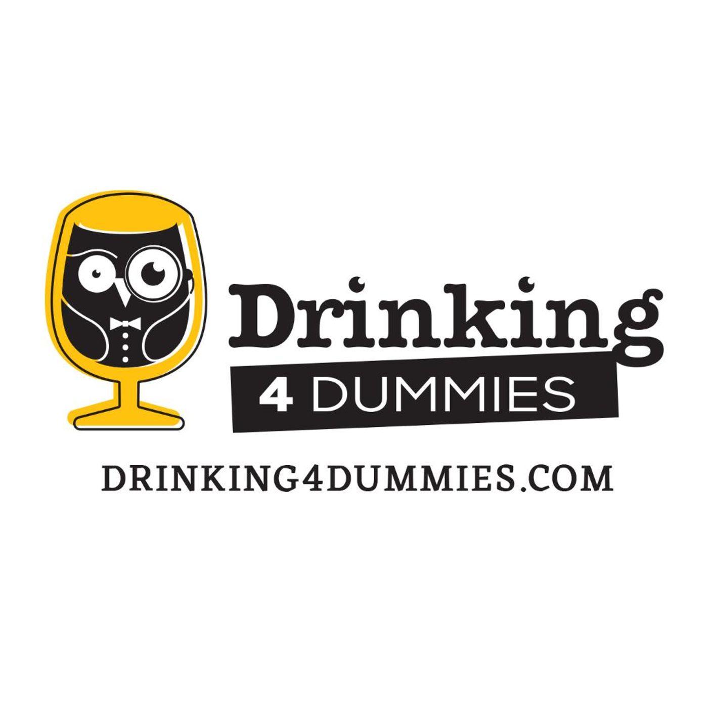 Drinking 4 Dummies Promo