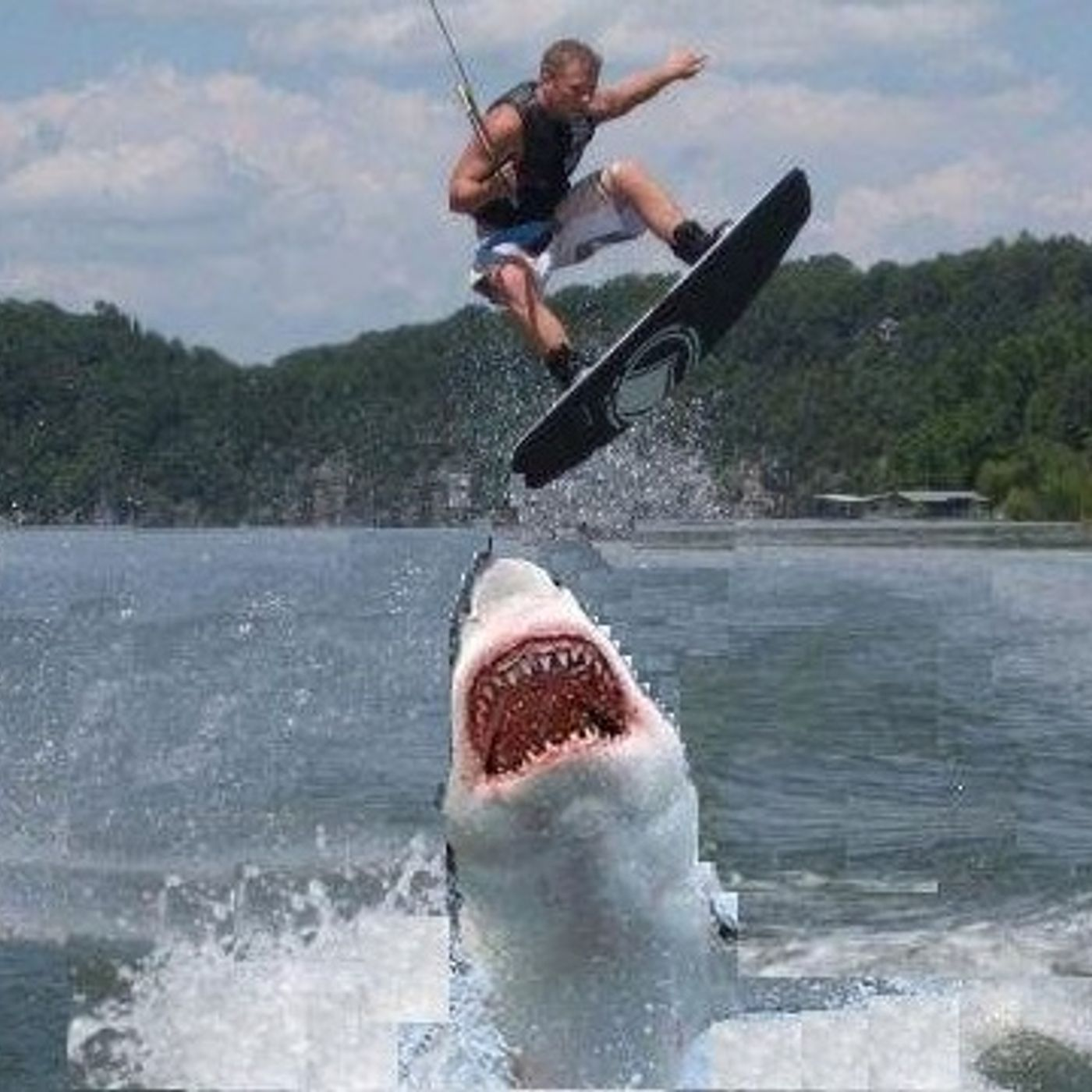 282. Patron Roundtable #4: Jumping the Shark