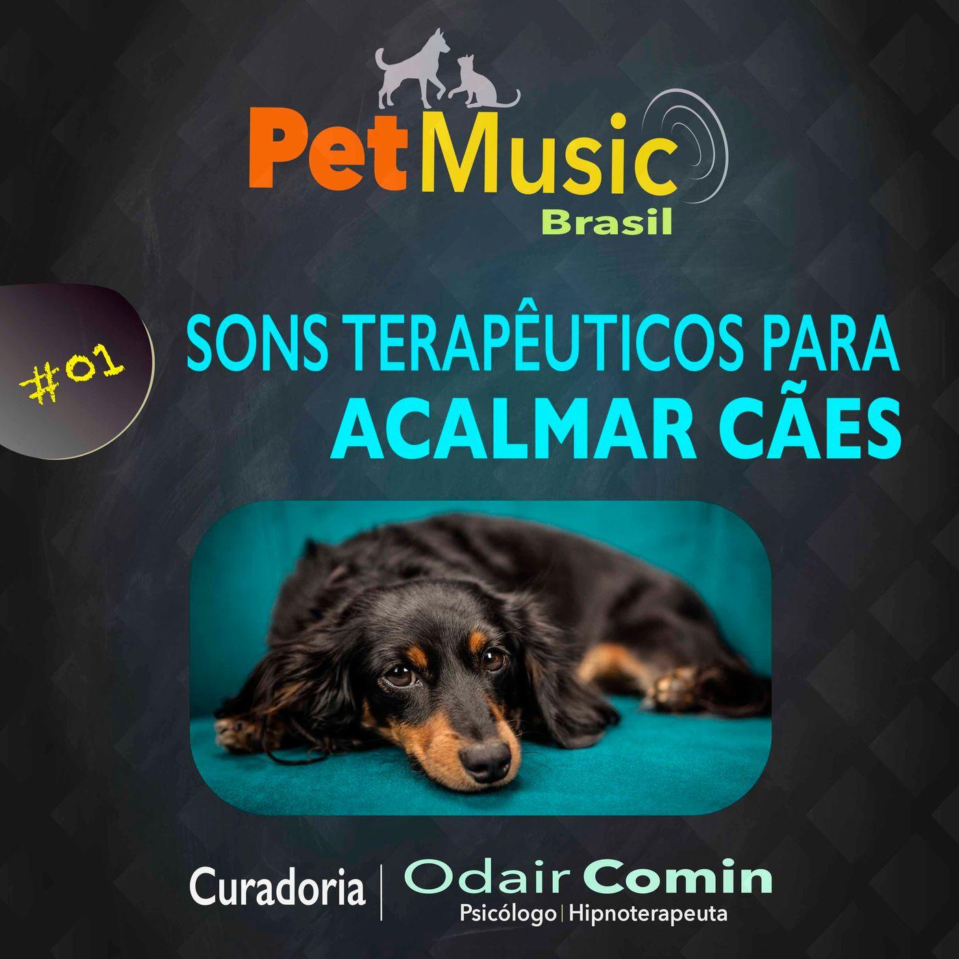 #01 Música para Acalmar seu Cão   Sons Terapêuticos