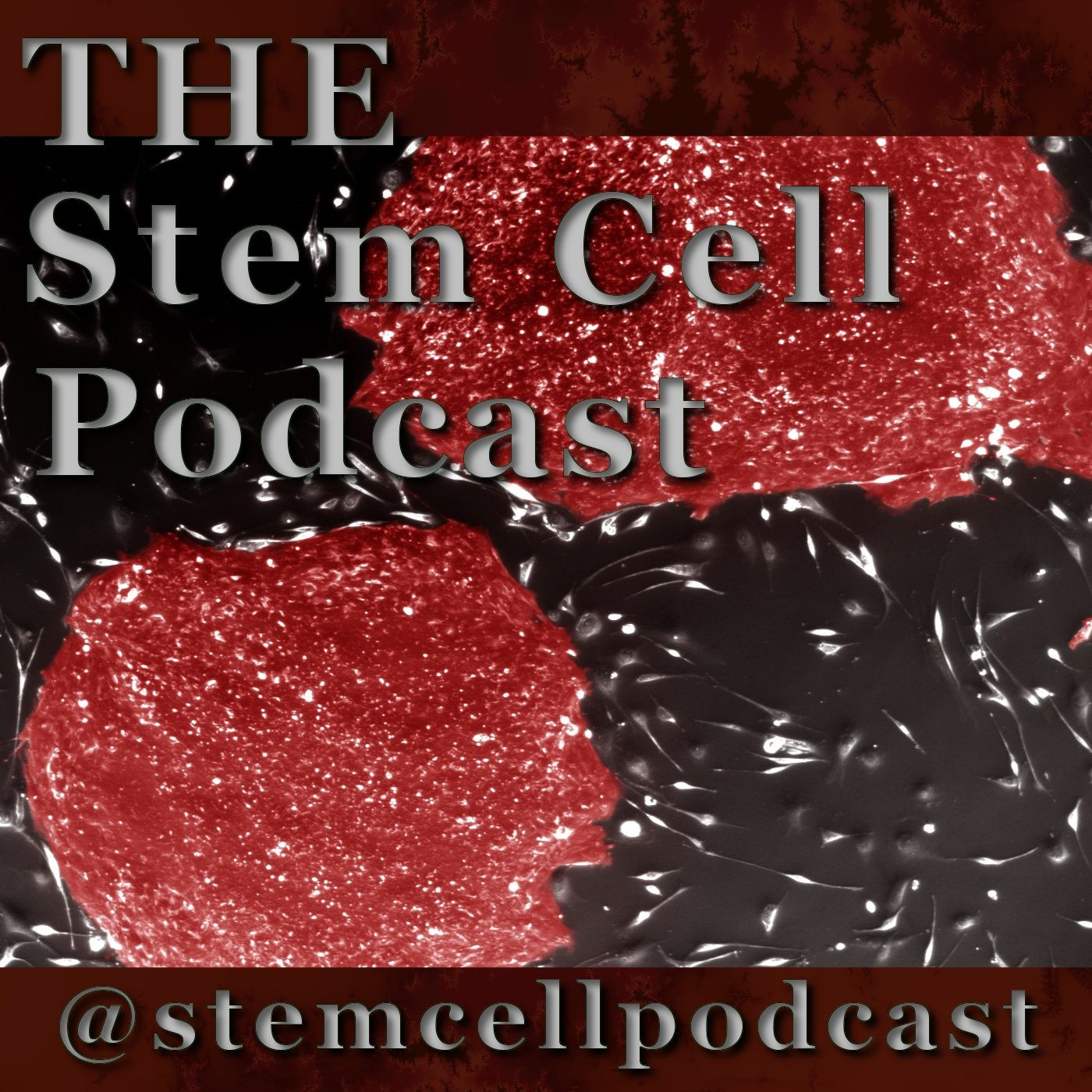 The Stem Cell Podcast