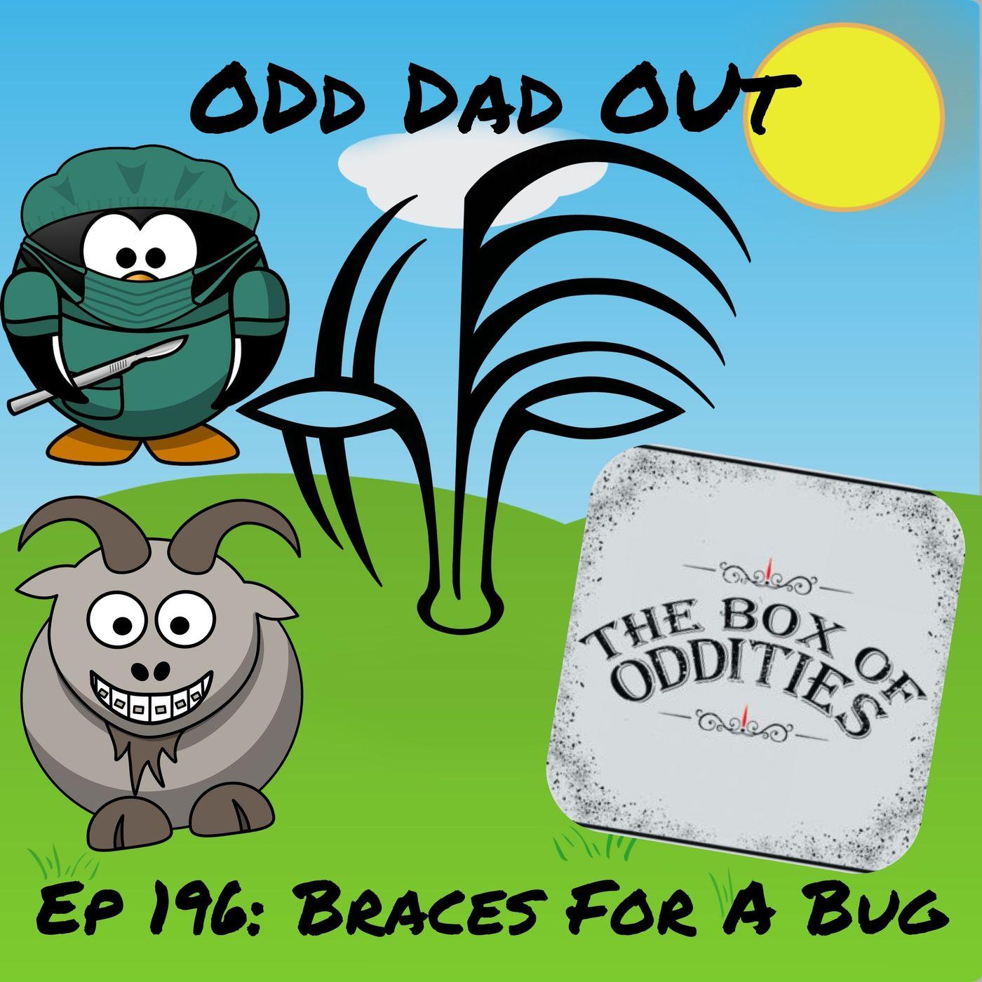 Braces For A Bug: ODO 196