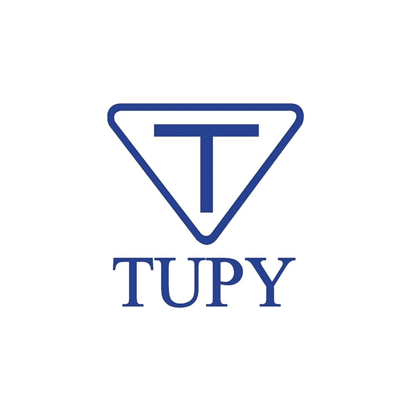 Teleconferência do Resultado Tupy (TUPY3) 4 trimestre 2019 - 4t19