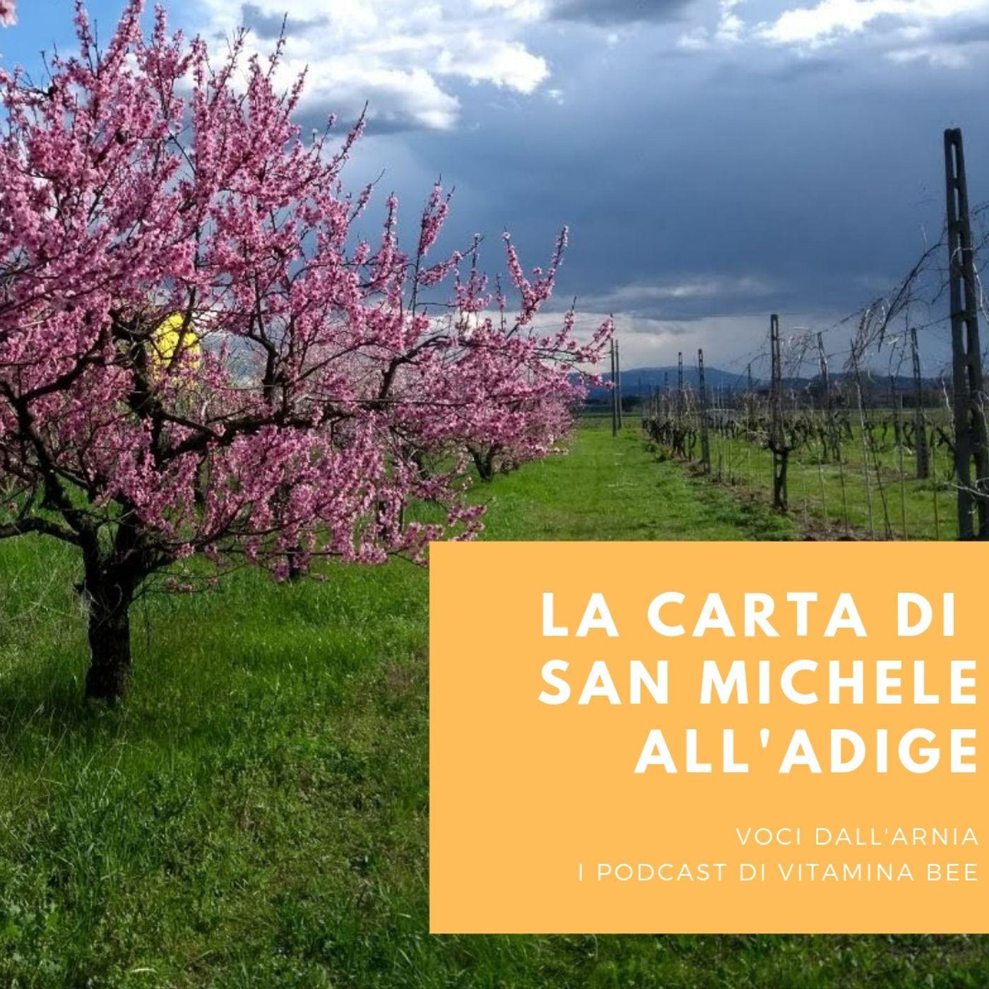 La Carta di San Michele all'Adige