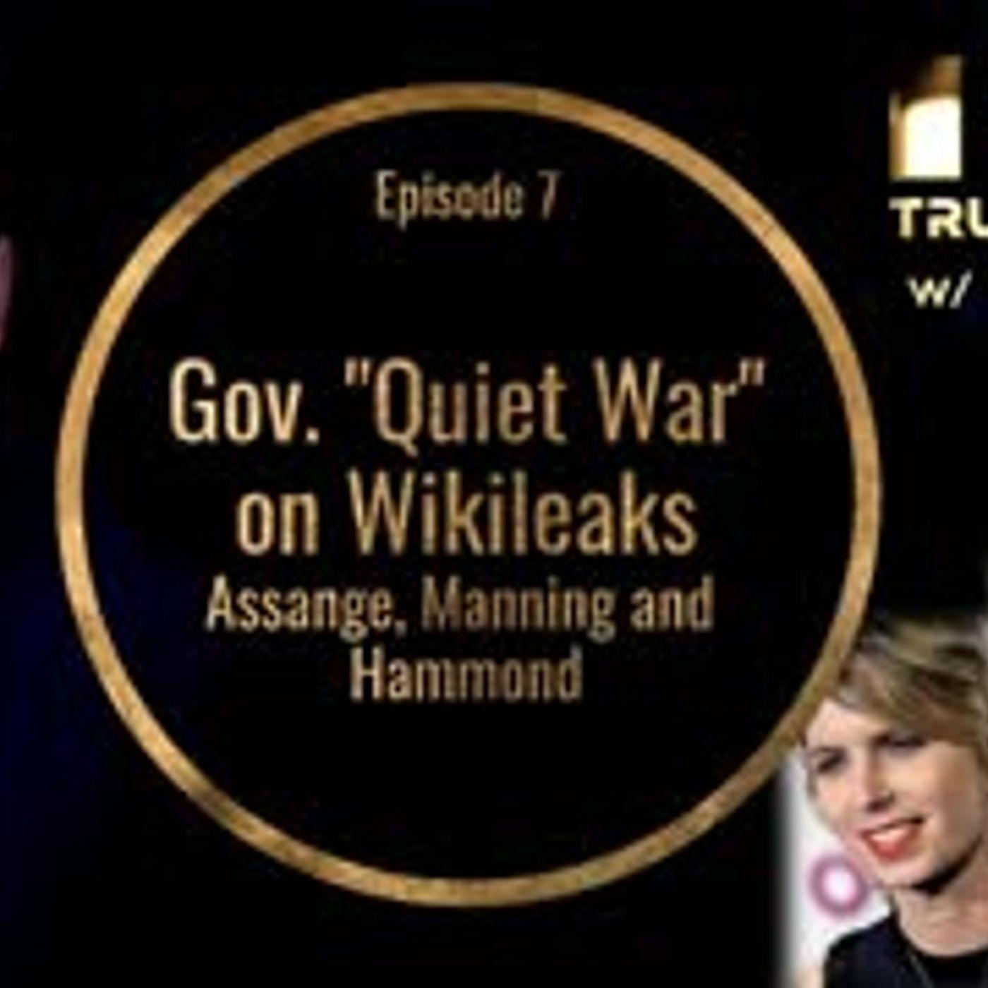 Gov.  Quiet War  on Wikileaks, Assange, Manning and Hammond (Truth In Media w Ben Swann)