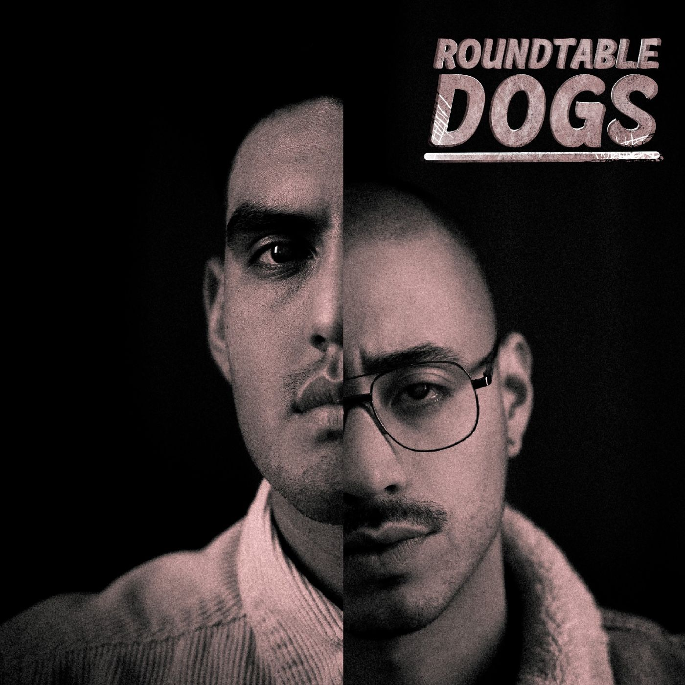 Portación de armas - Roundtable dogs 4