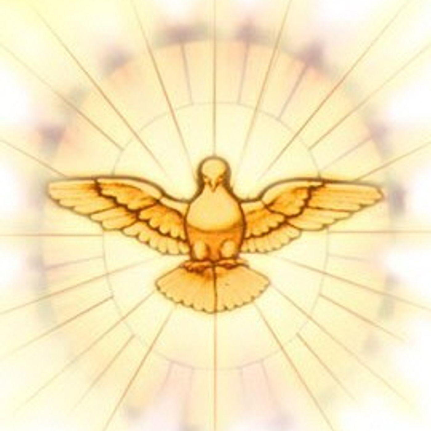 Spirito 190 - Commento 04 Numeri capitolo 12 e 13