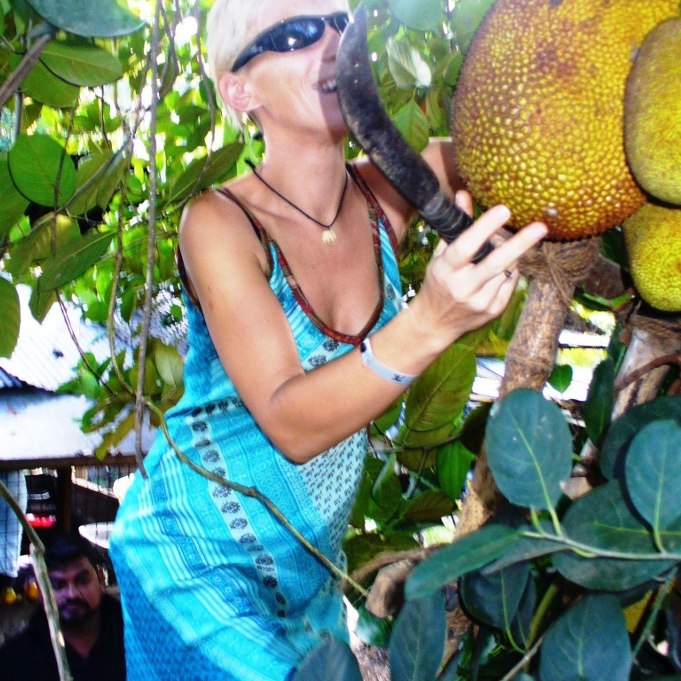 """Odc.10 Sri Lanka """"Jackfruit, czyli jeże na drzewach"""""""
