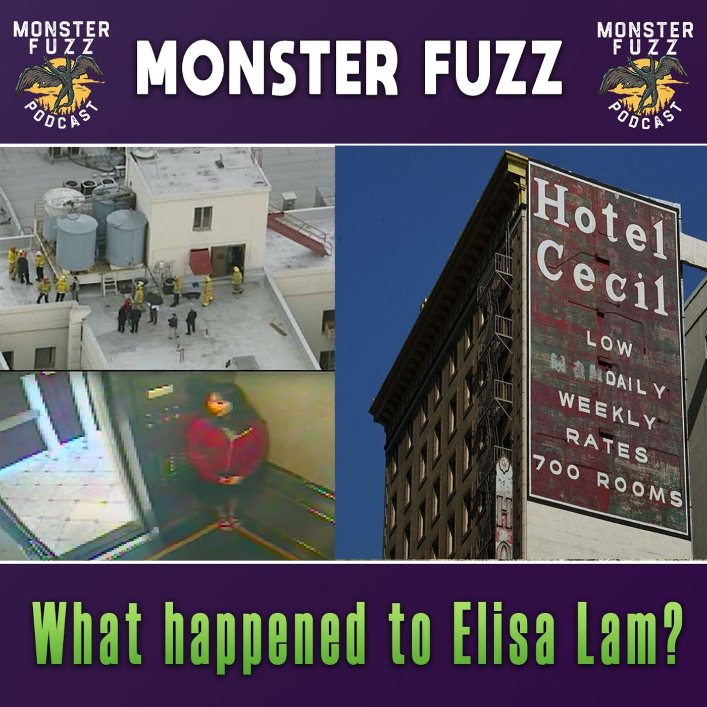 What happened to Elisa Lam?