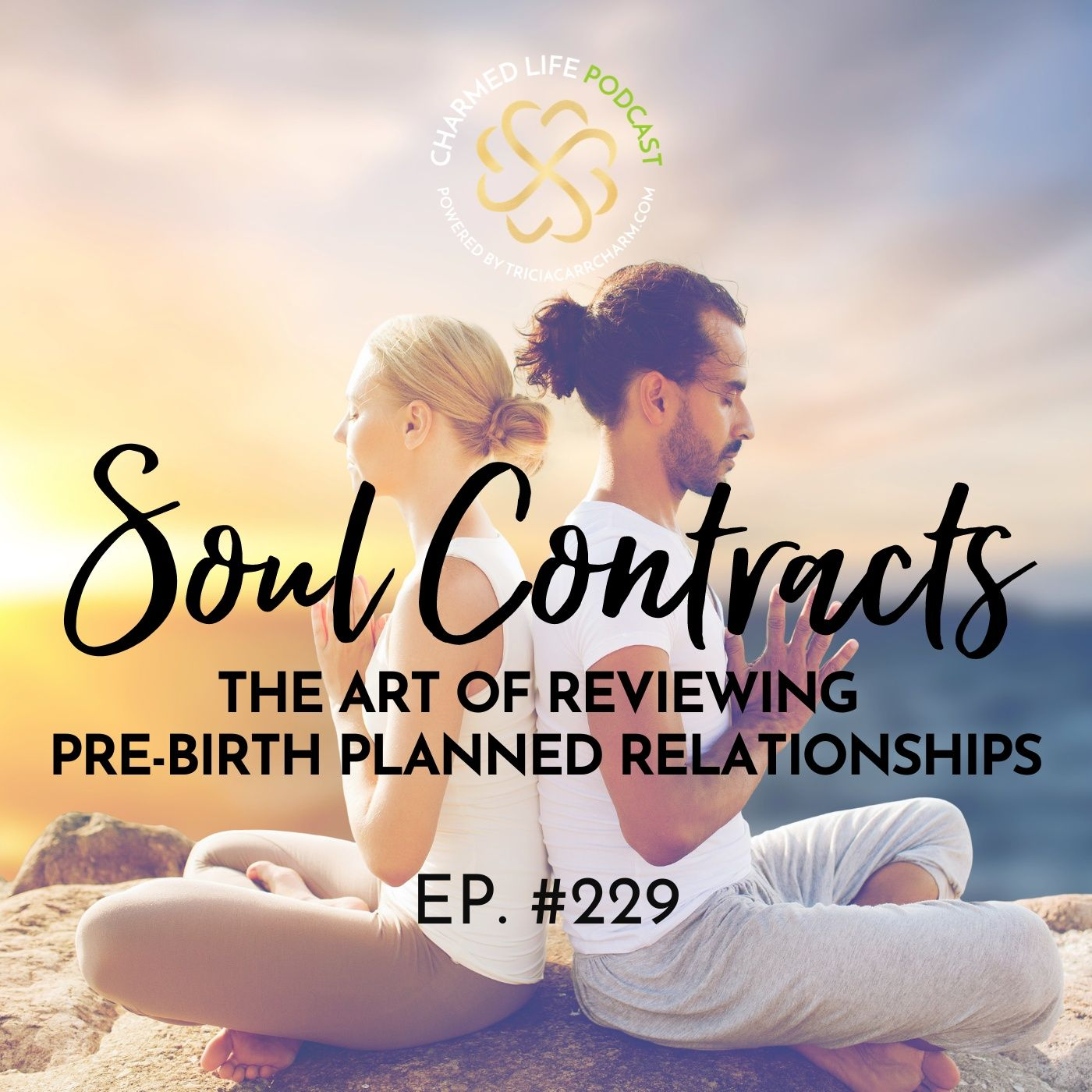 229: Soul Contracts   The Art of Reviewing Pre-birth Planned Relationships