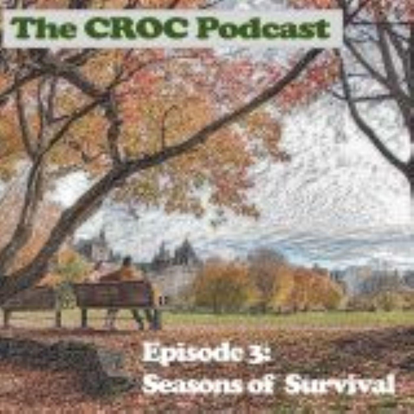 Ep3: Defining Survivorship Module 2 - Seasons of Survivorship