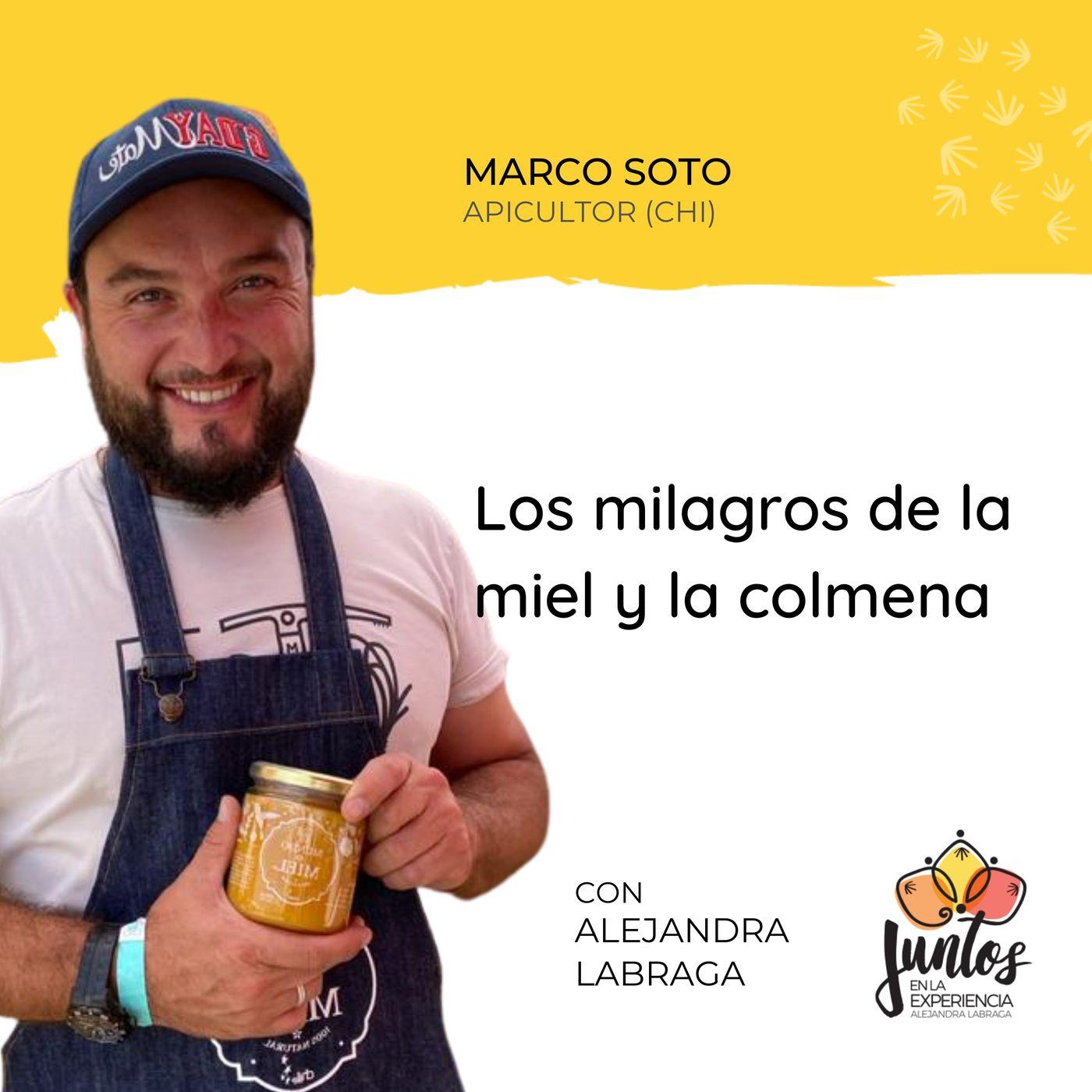 Ep. 076 - Los milagros de la miel y la colmena con Marco Soto