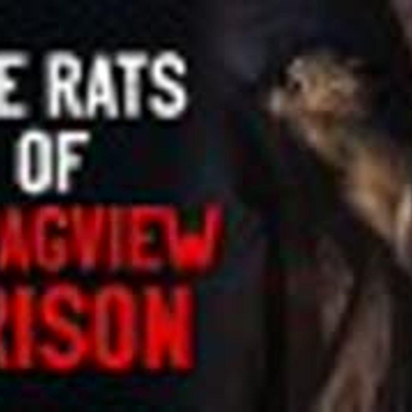 """The Rats Of Stragview Prison"" Creepypasta"