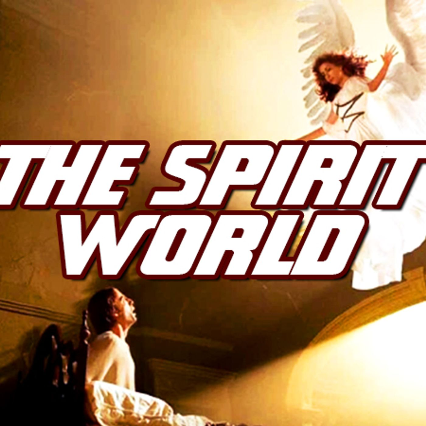 NTEB RADIO BIBLE STUDY: Understanding What Happens In The Very Active And Mostly Unseen Realm Of The Spirit World In Your King James Bible