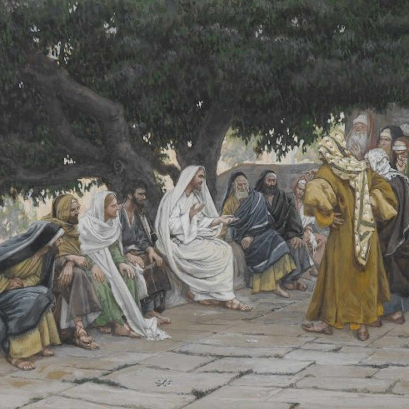 Monday of the Twenty-Seventh Week in Ordinary Time - Openness to the Gospel