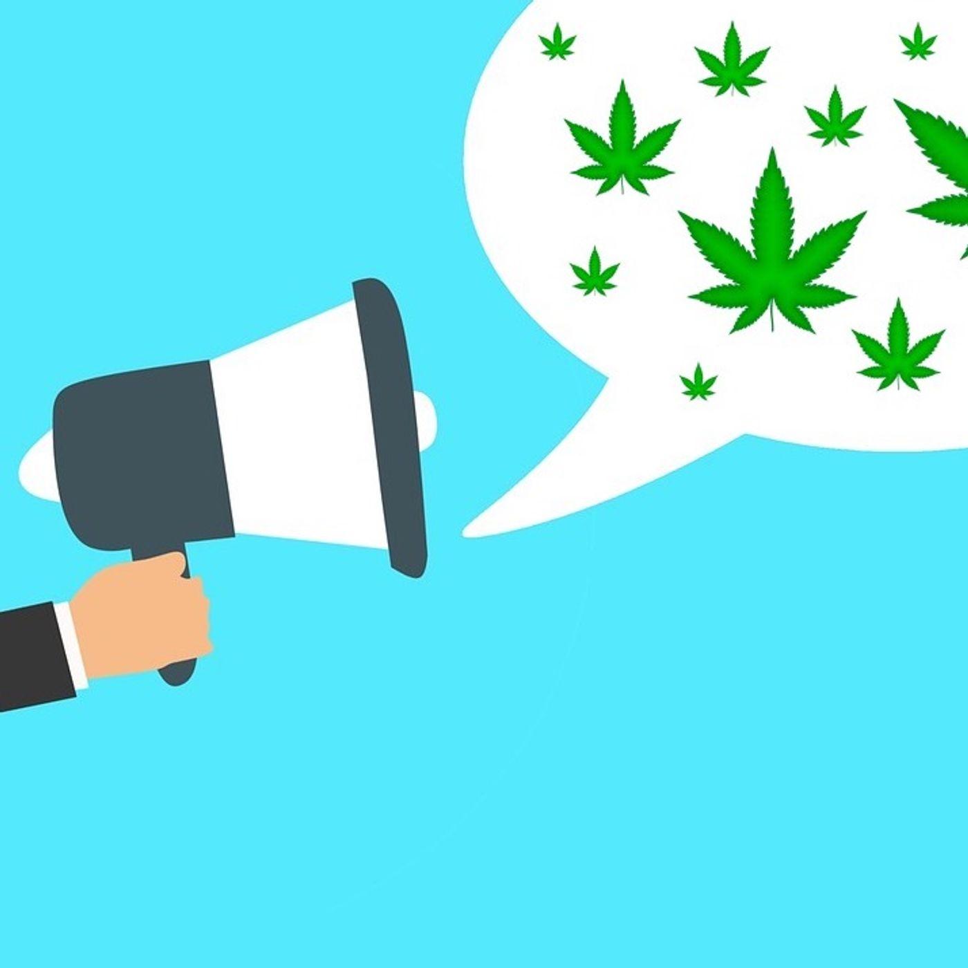 Una legge per l'autoproduzione di cannabis, firma l'appello!