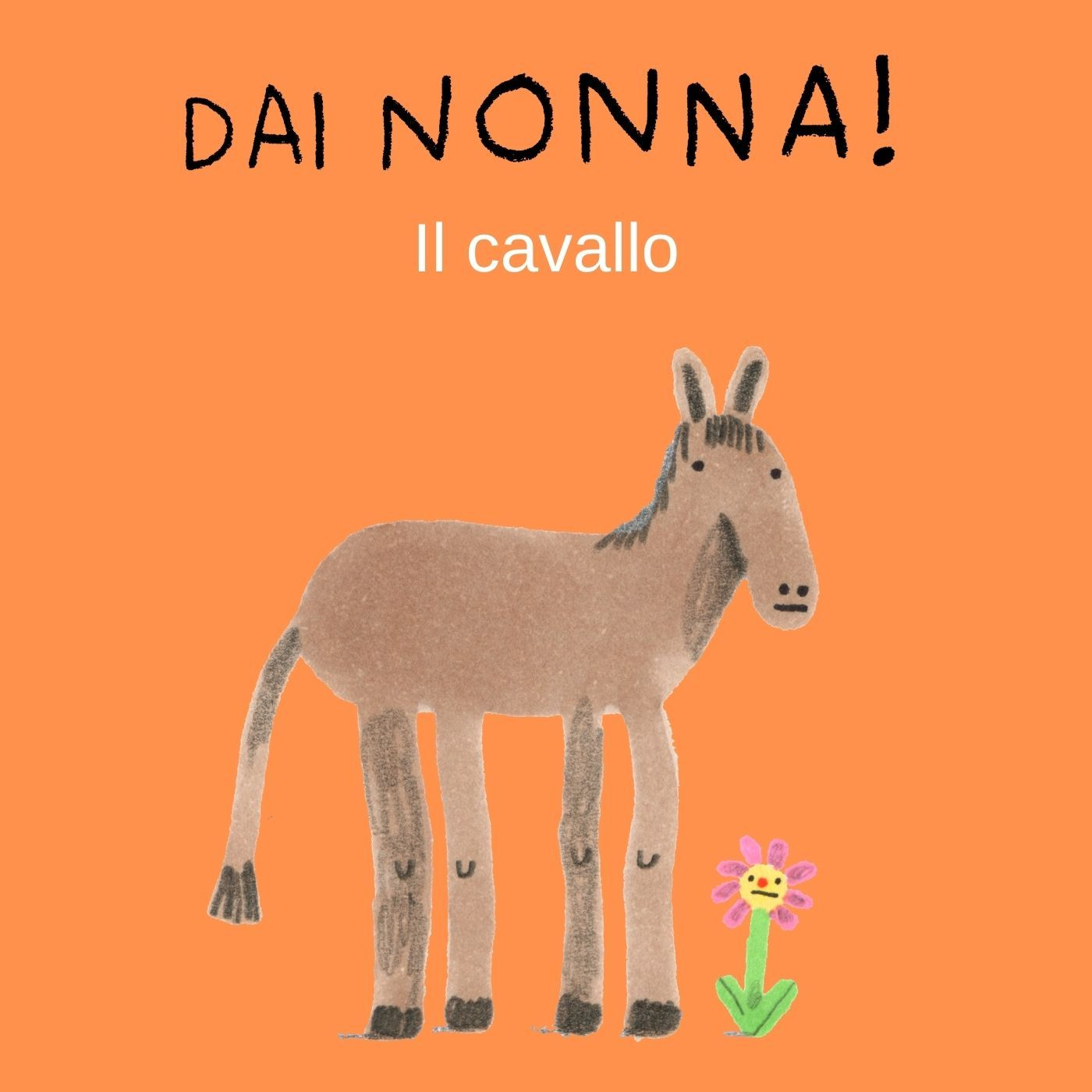 Il Cavallo - nona serie