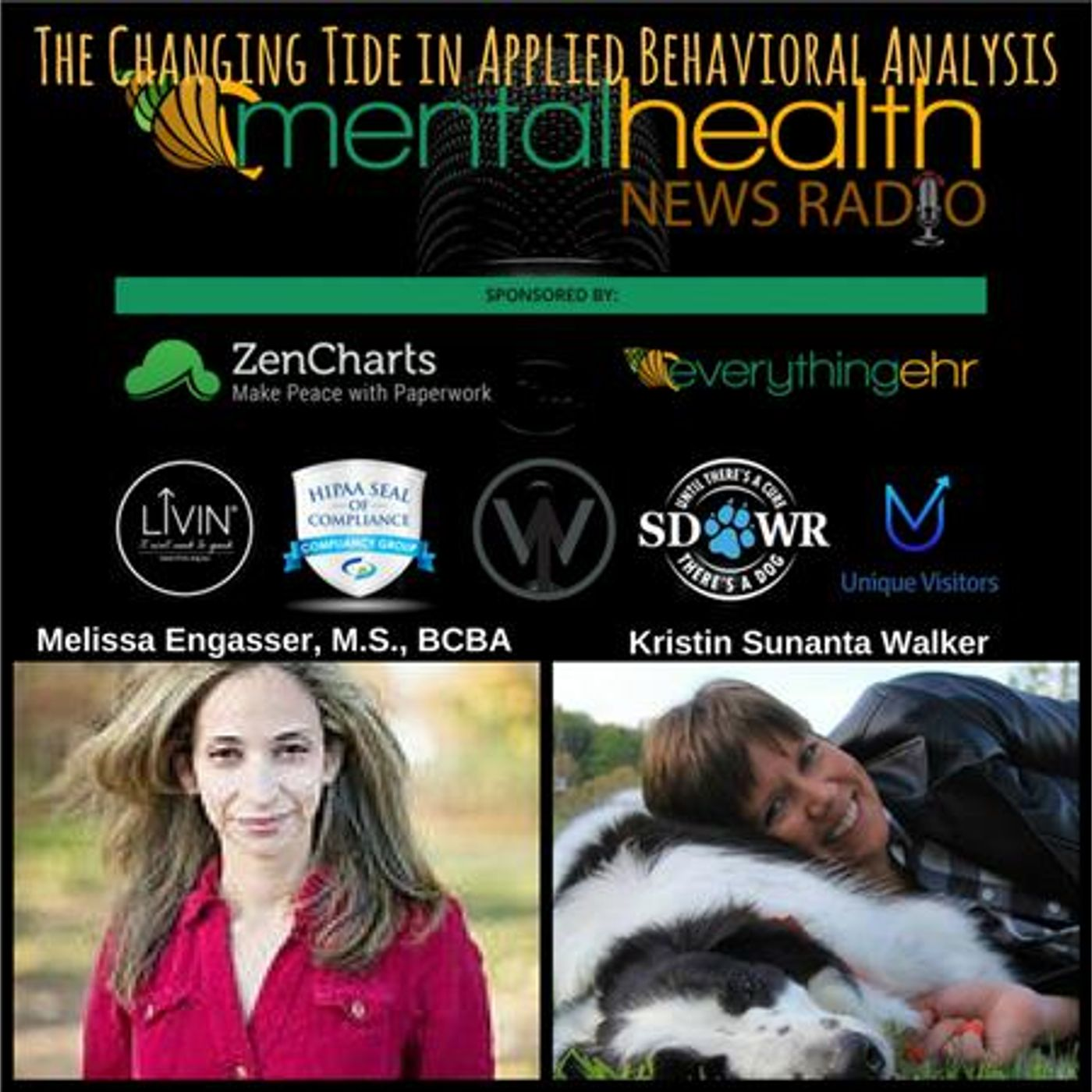 Mental Health News Radio - The Changing Tide in Applied Behavioral Analysis with Melissa Engasser