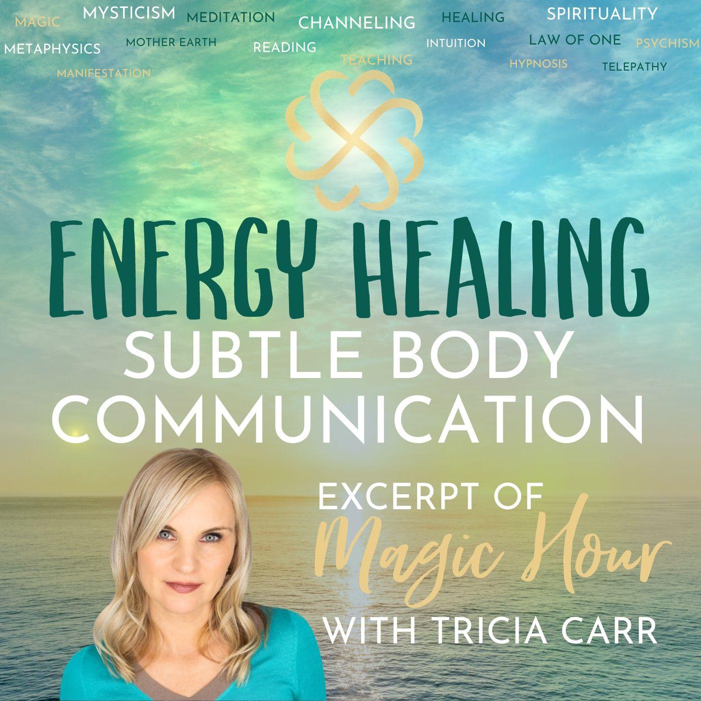 Energy [Self] Healing   Subtle Body Communication   Magic Hour Excerpt