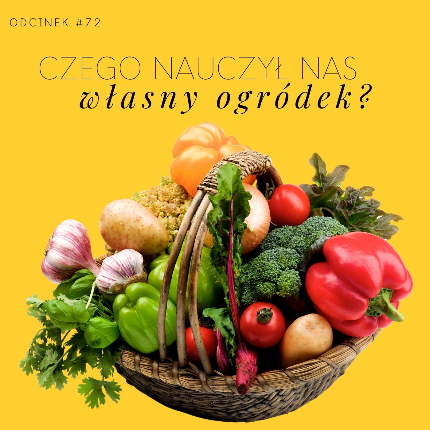 #72 Czego nauczył nas własny warzywnik